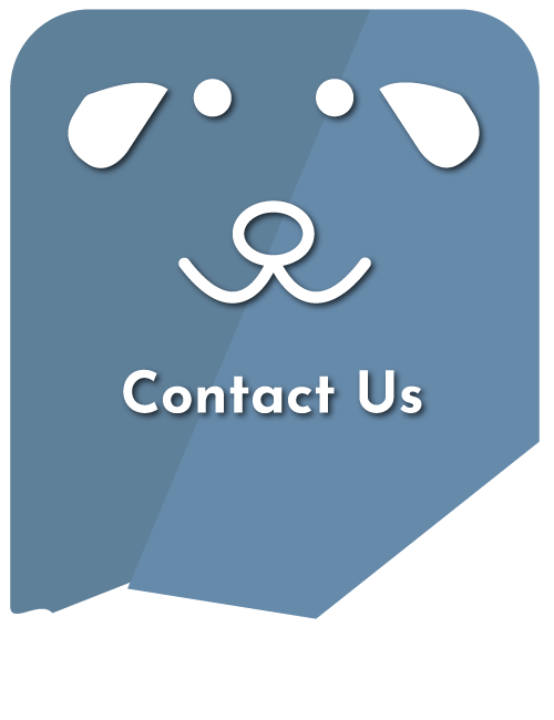 Contact Our Animal Hospital